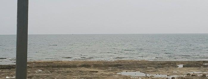 mesutun yeri gölovası is one of ADANA-MERSİN-HATAY GURME MEKANLARI.