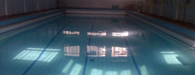 Asociación Cristiana de Jóvenes (YMCA) is one of En la Ciudad.