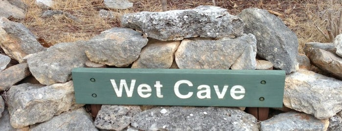 Wet Cave, Naracoorte Caves is one of South Australia (SA).