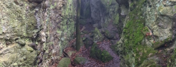 Vasas szakadék is one of Budai hegység/Pilis.