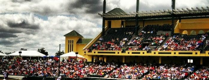Champion® Stadium is one of FUN.