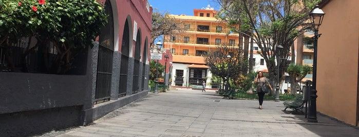 Advans is one of Tenerife: zumerias y cafeterias..