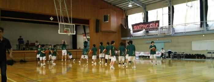 東京都立 豊島高等学校 is one of 都立学校.