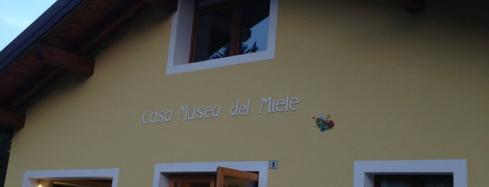 Museo del Miele is one of Trentino.