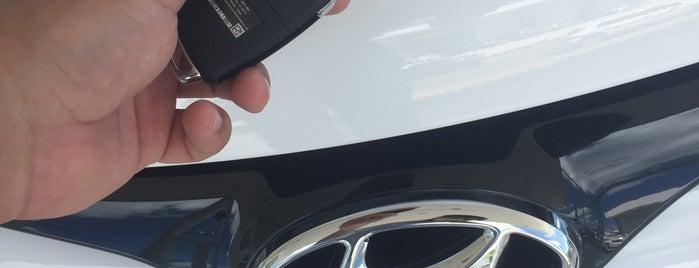 Saga (Hyundai) is one of Dealers.