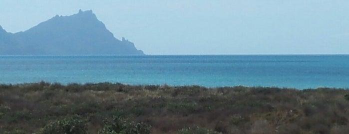 Ruakaka Beach is one of Been there.