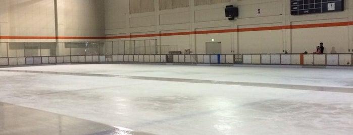 ヒルズサンピア山形 アイススケート場 is one of スケートリンク.