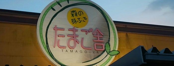 森の芽ぶき たまご舎 名取愛島本店 is one of メンバー.