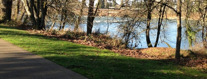 Skinner Butte Park is one of Outdoor places.