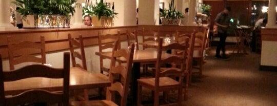 Olive Garden is one of Restaurant.