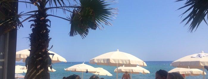 Surya Beach Restaurant Bar is one of My Barcelona!.