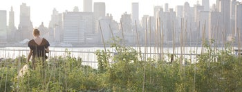 Eagle Street Rooftop Farms is one of Cool Things To Do on NYC Rooftops.