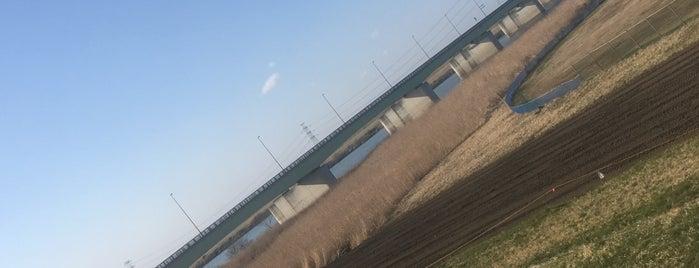 若草大橋 is one of サイクリング.