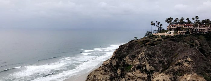 Scripps Coastal Reserve is one of Whale's Vagina.