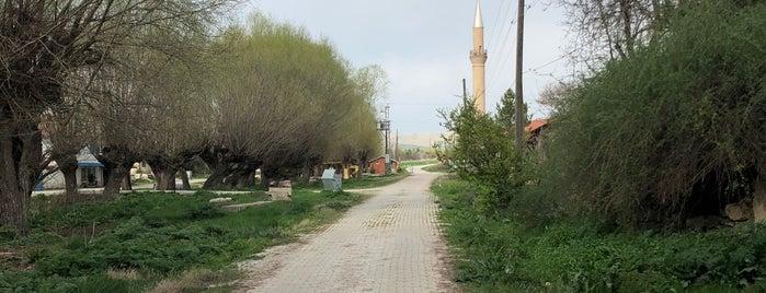 Pusan is one of Kütahya | Altıntaş İlçesi Köyleri.