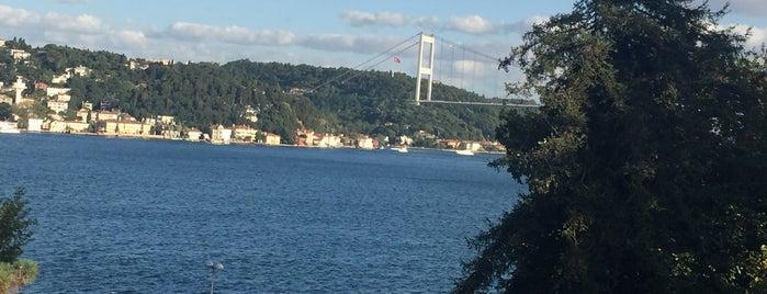MSA'nın Restoranı is one of İstanbul.