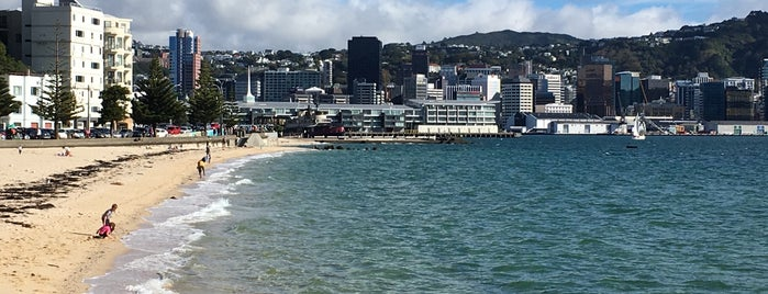 Oriental Bay is one of New Zealand Highlights.