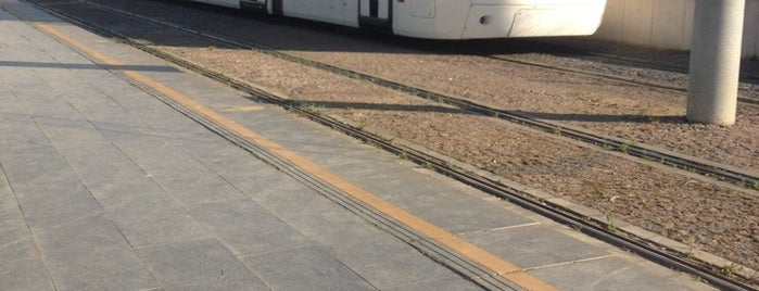 Atakum Belediyesi Tramvay Durağı is one of Samsun'un Hafif Raylı Sistemleri.