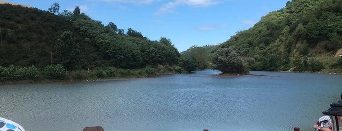 Sera Gölü Tabiat Parkı is one of karadeniz.