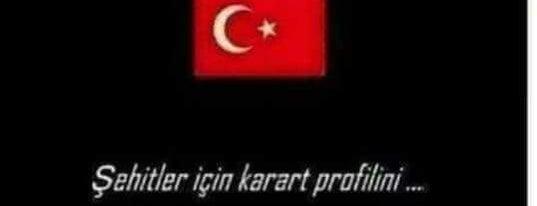 Kestel Balıkçılık İbo Dayı'nın Yeri is one of antalya~ alanya~ side~belek.