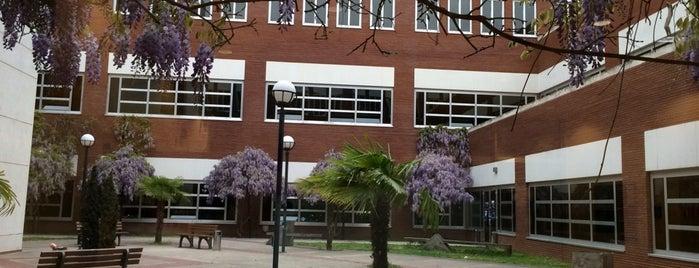 Sabanci University FASS is one of Sabanci Universitesi Oryantasyon 2012.
