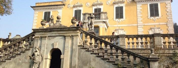 Novi Ligure e il Novese: un territorio da gustare