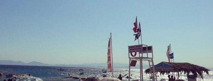 Olivera Beach & Bar is one of AYVALIK #1 🏊🏄.