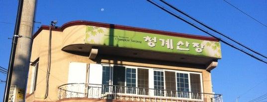 청계산장 is one of 에바의 강추 목록.