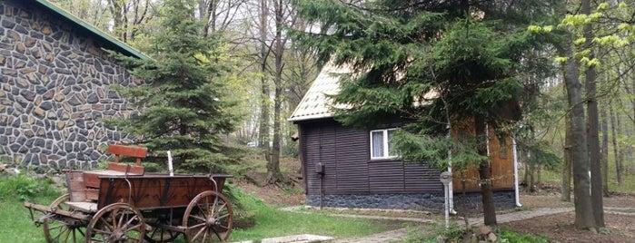 Darázshegyi Vendégház és Apartmanházak is one of countryside • hungary • sleep.