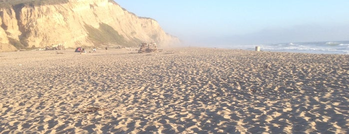 San Gregorio State Beach is one of South Bay.
