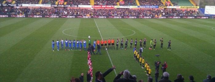 Daknamstadion is one of Jupiler Pro League and Belgacom League - 2013-2014.