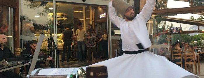 Balık Keyfi is one of Gezgin geyikler yemekte.