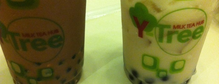 Green tea coffee wrap image 3