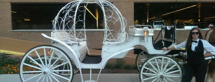 Yellow Rose Carriage Ride is one of 50 Date Ideas For Less Than $50.