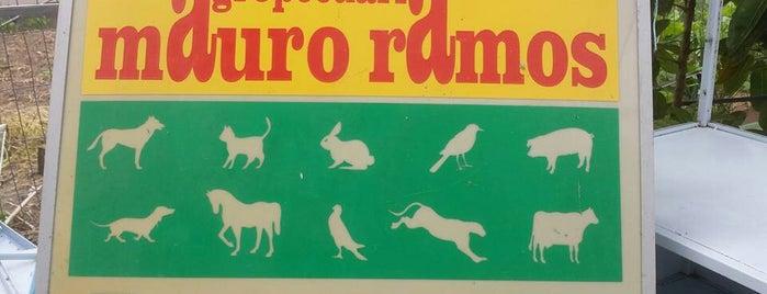 Pet Shop Mauro Ramos is one of Lugares que já dei checkin.