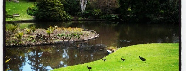 Royal Botanic Gardens is one of Love In Dear Melbourne.