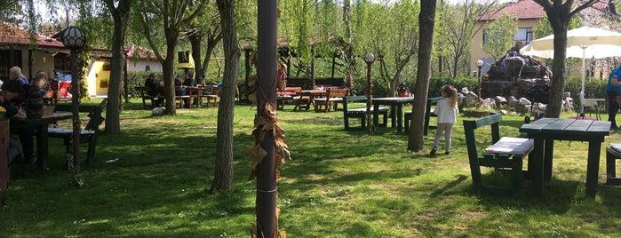 Şölen Bahçe is one of Beypazari gezisi.