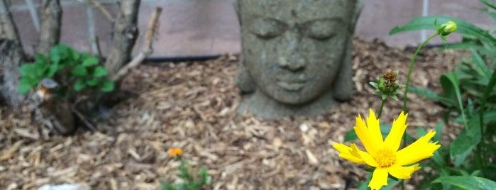 Zen Center of Denver is one of Everywhere I've been in the Denver Metro.