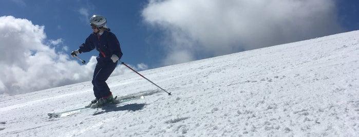 Glacier de la Grande Motte is one of Stations de ski (France - Alpes).