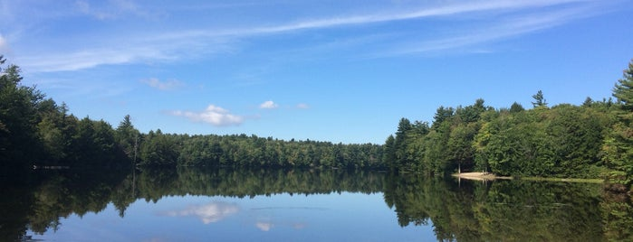 D.A.R. State Forest is one of Western Mass Faves.