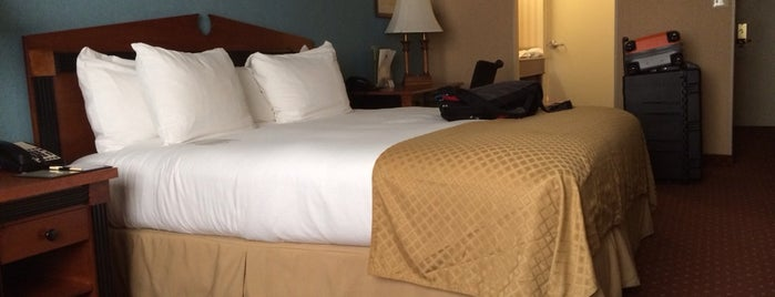 Inn at The Colonnade Baltimore - A DoubleTree by Hilton Hotel is one of The 15 Best Comfortable Places in Baltimore.