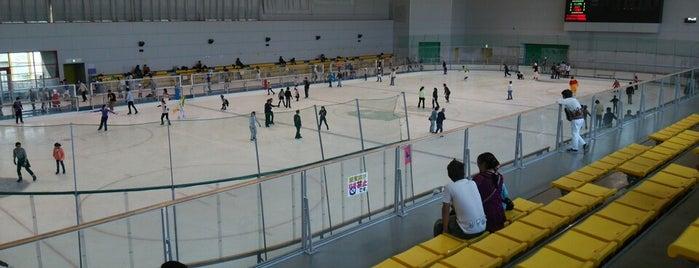 愛・地球博記念公園 アイススケート場 is one of スケートリンク.