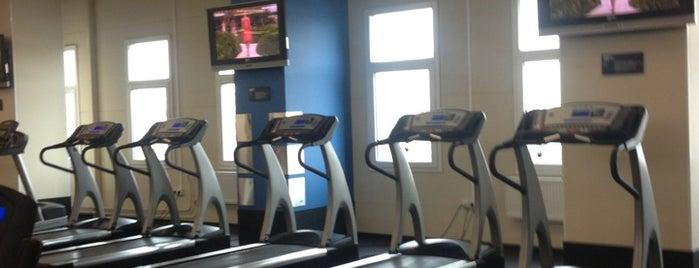 SportLife is one of Места оборудованные для видеотрансляций.