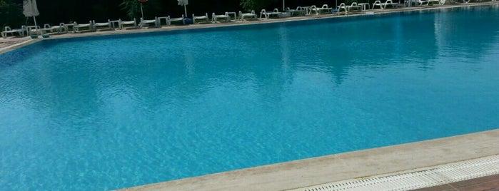 Pelikan Otel Yüzme Havuzu is one of İstanbul Avrupa Yakası #4 🍁🍃.