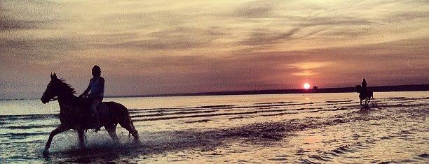 Пляж «Дюны» is one of Н.