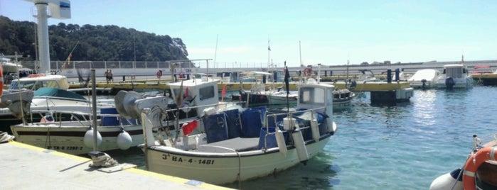 Xiringuito Canyelles is one of Restaurants a la platja.