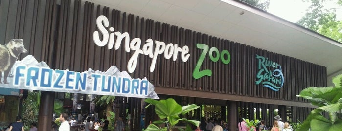 Singapore Zoo is one of Fun.