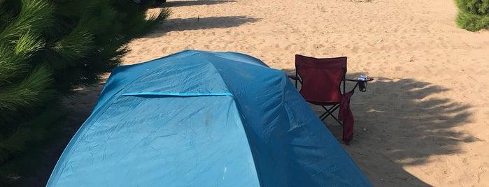 Abone Camping is one of Kamp.