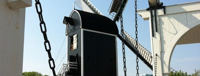 Park de Put is one of Parks & Outdoors : Leiden.