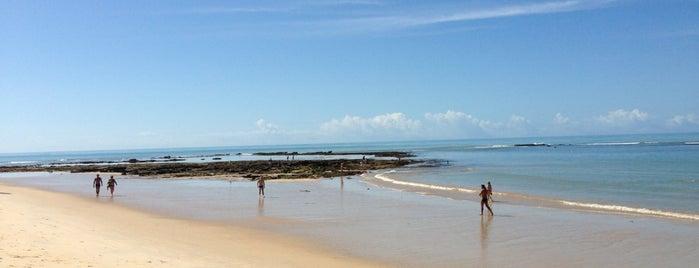 Barraca de Pitinga (RODINHA) is one of Arraial D'ajuda.